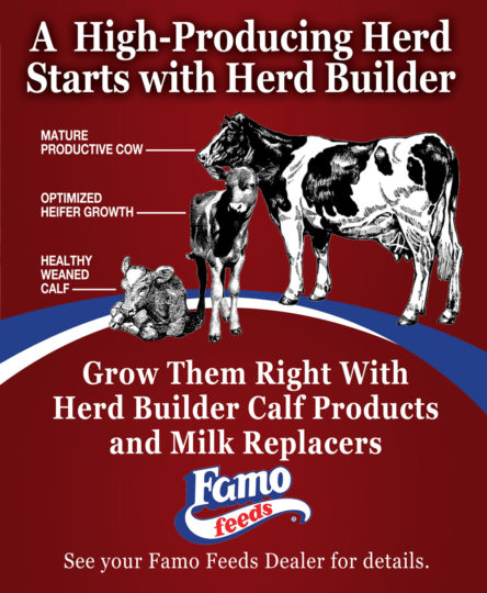 Famo_CTA_Herd_Builder_2